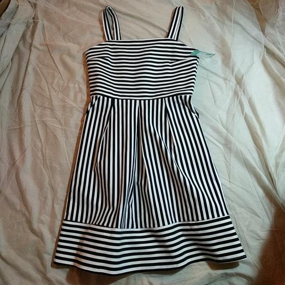 5d5554896e5 NWT Brixon Ivy Ponte Black and White Striped Dress